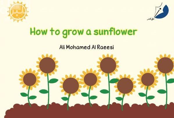 How to grow a sunfiower
